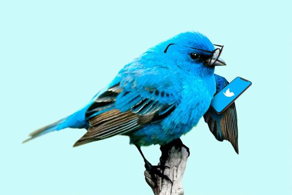 Message vocal Twitter